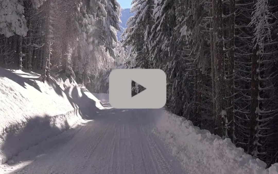 A screenshot of the video shows snowy roads in the middle of a forest.