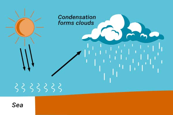 Routing Weather